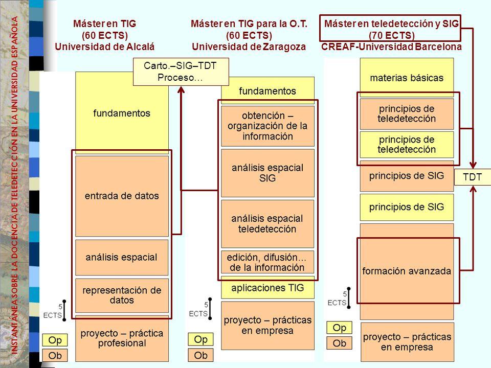 Máster en TIG (60 ECTS) Universidad de Alcalá Máster en TIG para la O.T.