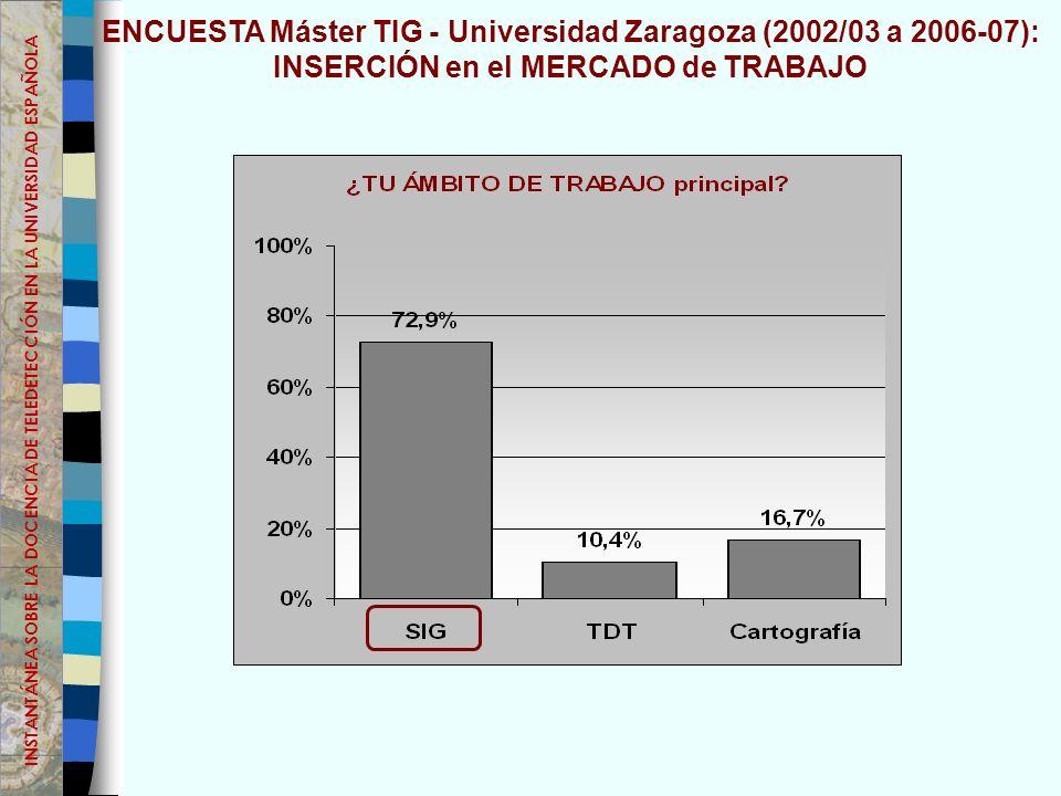 ENCUESTA Máster TIG - Universidad Zaragoza (2002/03 a 2006-07): INSERCIÓN en el MERCADO de TRABAJO INSTANTÁNEA SOBRE LA DOCENCIA DE TELEDETECCIÓN EN LA UNIVERSIDAD ESPAÑOLA
