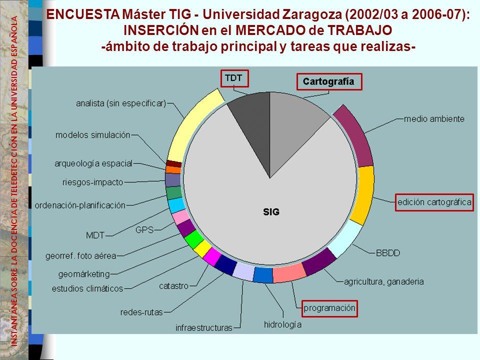 ENCUESTA Máster TIG - Universidad Zaragoza (2002/03 a 2006-07): INSERCIÓN en el MERCADO de TRABAJO -ámbito de trabajo principal y tareas que realizas- INSTANTÁNEA SOBRE LA DOCENCIA DE TELEDETECCIÓN EN LA UNIVERSIDAD ESPAÑOLA