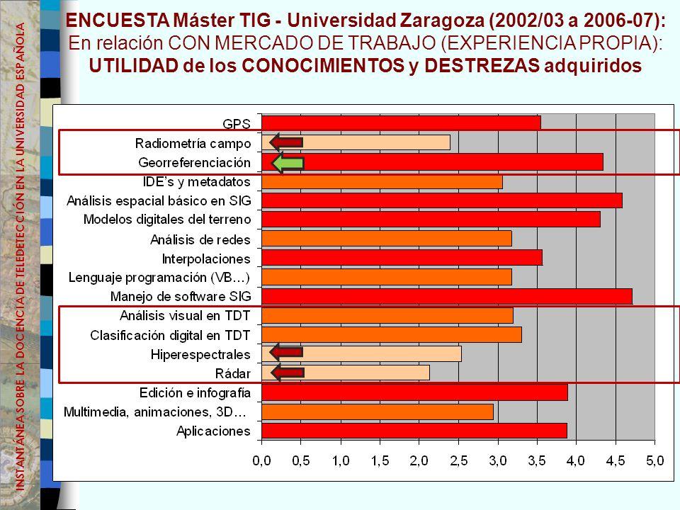 ENCUESTA Máster TIG - Universidad Zaragoza (2002/03 a 2006-07): En relación CON MERCADO DE TRABAJO (EXPERIENCIA PROPIA): UTILIDAD de los CONOCIMIENTOS y DESTREZAS adquiridos INSTANTÁNEA SOBRE LA DOCENCIA DE TELEDETECCIÓN EN LA UNIVERSIDAD ESPAÑOLA