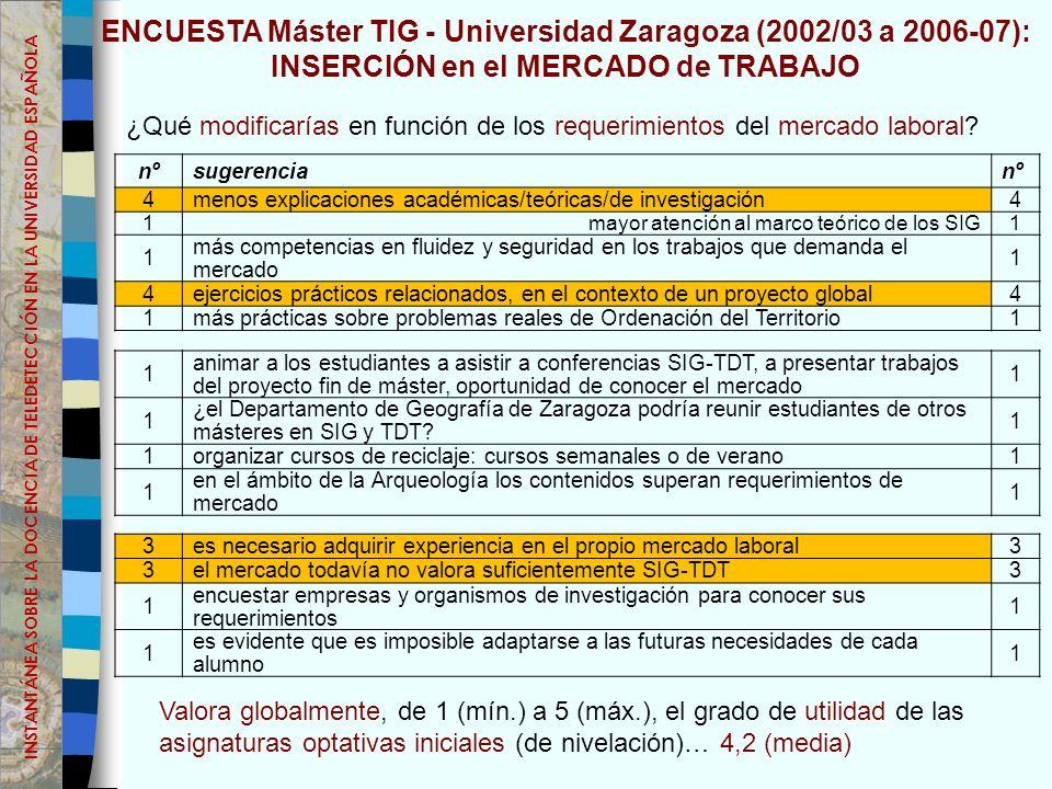 ENCUESTA Máster TIG - Universidad Zaragoza (2002/03 a 2006-07): INSERCIÓN en el MERCADO de TRABAJO ¿Qué modificarías en función de los requerimientos del mercado laboral.