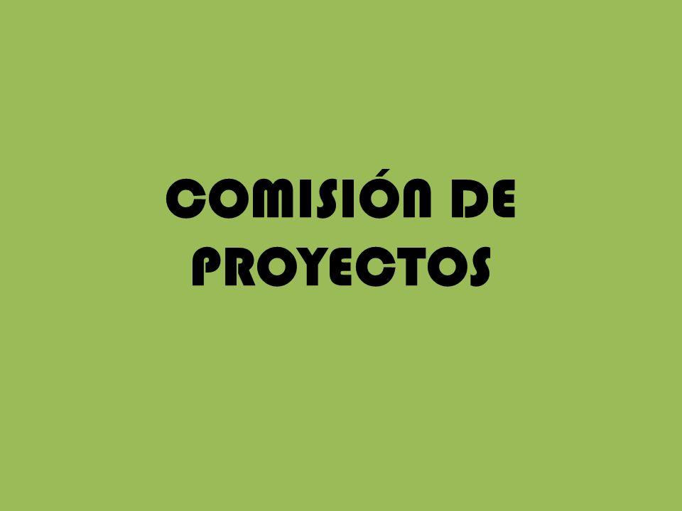COMISIÓN DE PROYECTOS