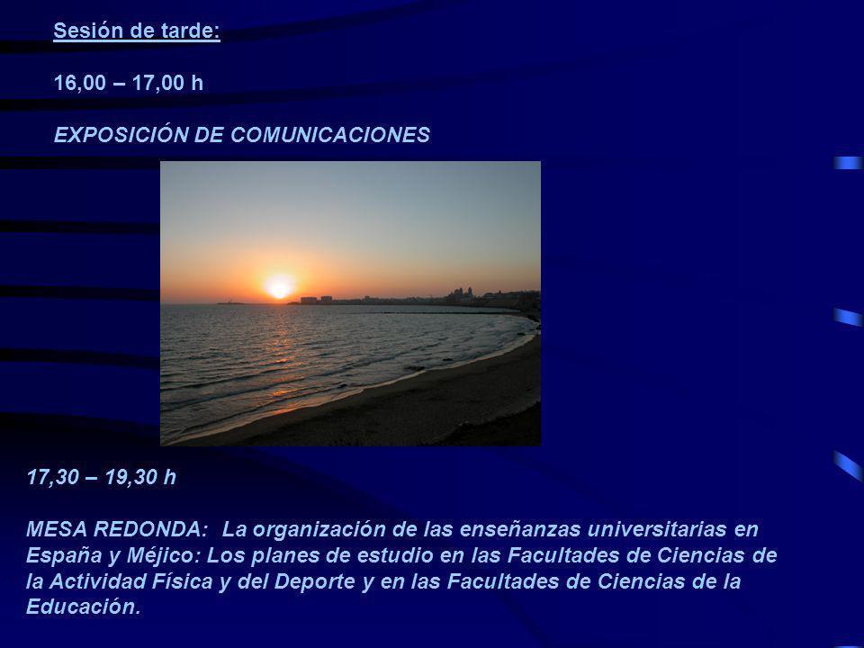 Sesión de tarde: 16,00 – 17,00 h EXPOSICIÓN DE COMUNICACIONES 17,30 – 19,30 h MESA REDONDA: La organización de las enseñanzas universitarias en España