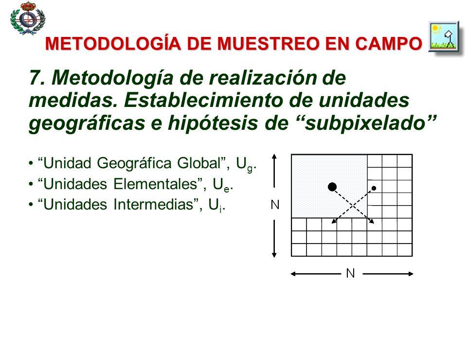 METODOLOGÍA DE MUESTREO EN CAMPO 7. Metodología de realización de medidas. Establecimiento de unidades geográficas e hipótesis de subpixelado Unidad G