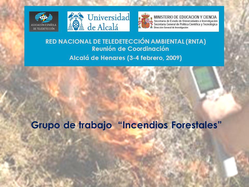 Grupo de trabajo Incendios Forestales RED NACIONAL DE TELEDETECCIÓN AMBIENTAL (RNTA) Reunión de Coordinación Alcalá de Henares (3-4 febrero, 2009)