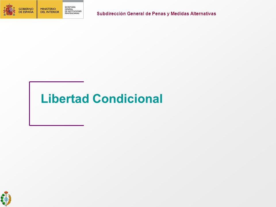 Libertad Condicional Subdirección General de Penas y Medidas Alternativas