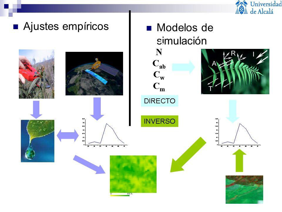 Ajustes empíricos Modelos de simulación