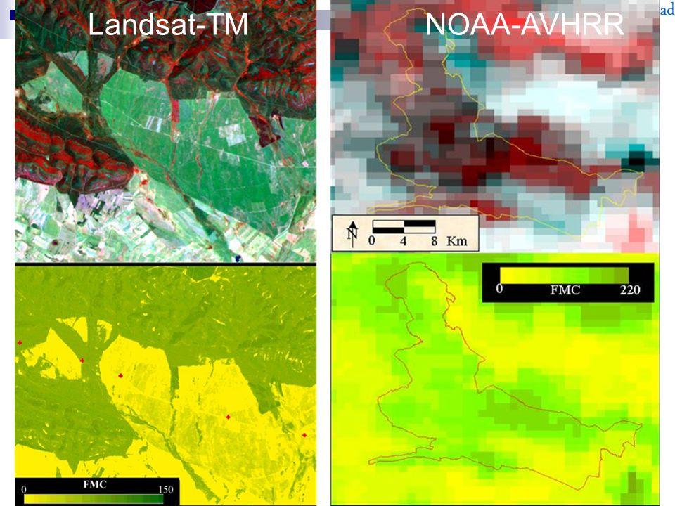 Landsat-TMNOAA-AVHRR