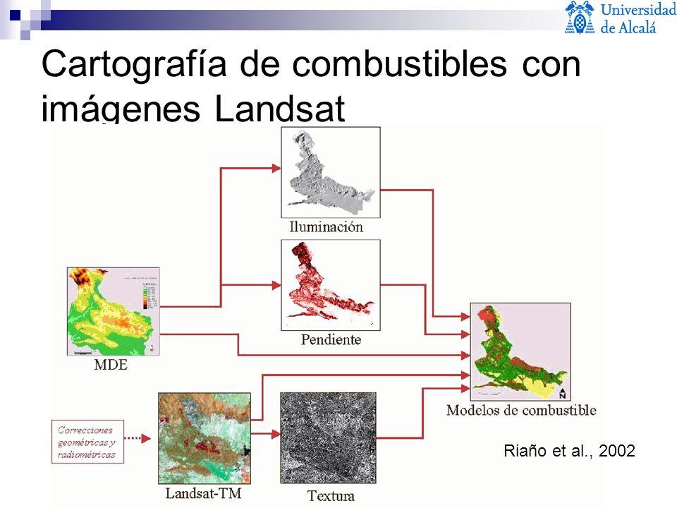 Cartografía de combustibles con imágenes Landsat Riaño et al., 2002