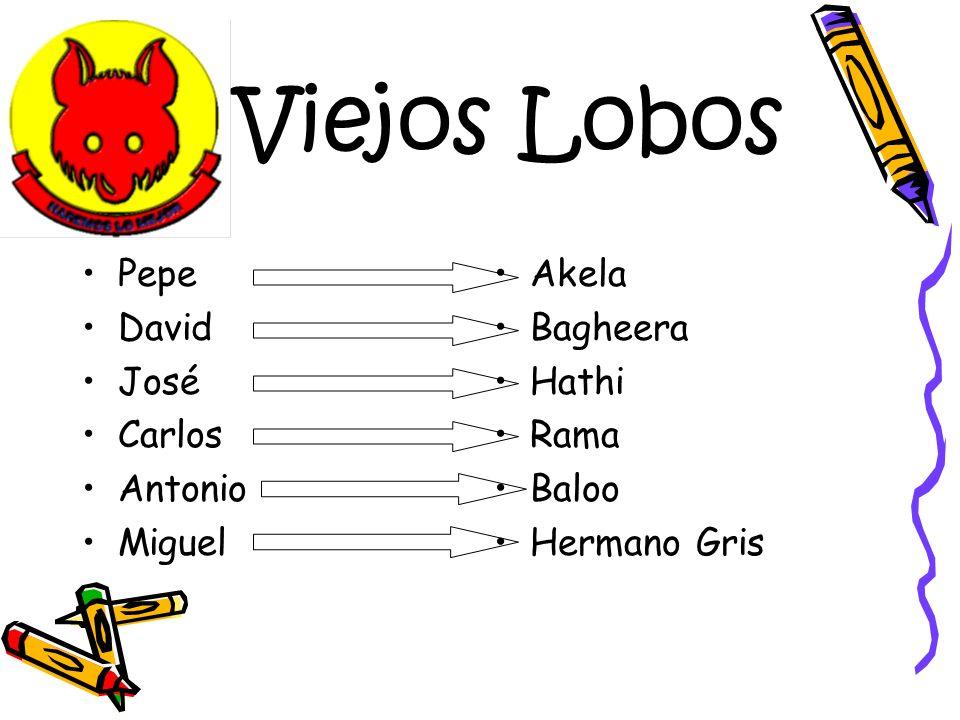 Pepe David José Carlos Antonio Miguel Akela Bagheera Hathi Rama Baloo Hermano Gris Viejos Lobos