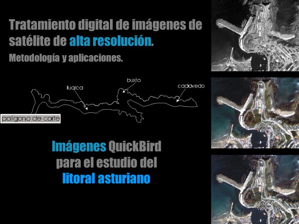 Tratamiento digital de imágenes de satélite de alta resolución. Metodología y aplicaciones. Imágenes QuickBird para el estudio del litoral asturiano