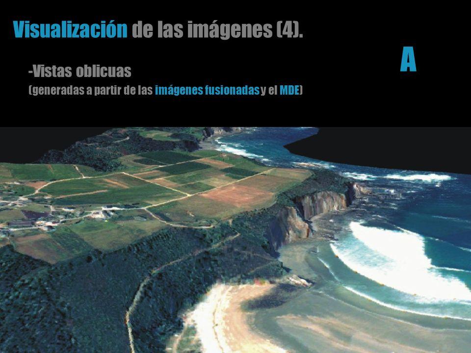 Visualización de las imágenes (4). -Vistas oblicuas (generadas a partir de las imágenes fusionadas y el MDE) A