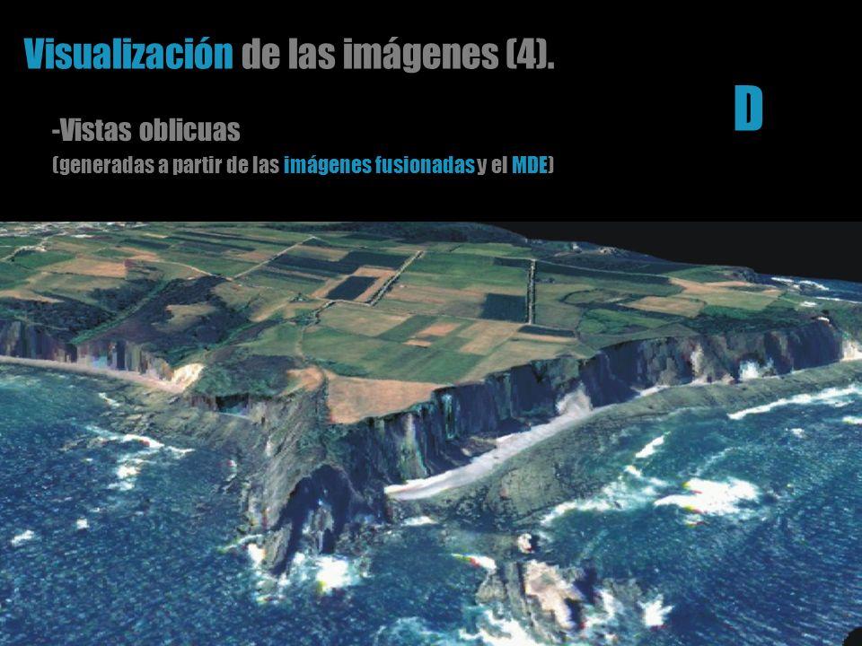 Visualización de las imágenes (4). -Vistas oblicuas (generadas a partir de las imágenes fusionadas y el MDE) D