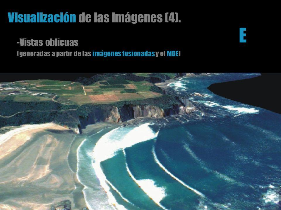 Visualización de las imágenes (4). -Vistas oblicuas (generadas a partir de las imágenes fusionadas y el MDE) E