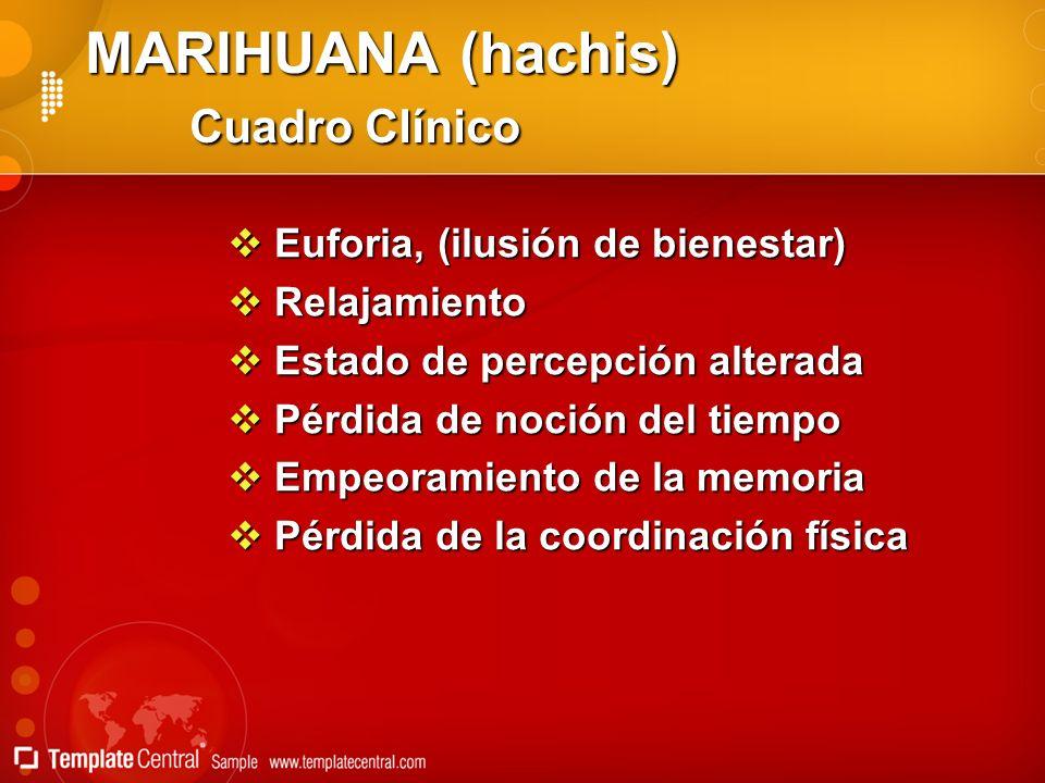 MARIHUANA (hachis) Cuadro Clínico Euforia, (ilusión de bienestar) Euforia, (ilusión de bienestar) Relajamiento Relajamiento Estado de percepción alter