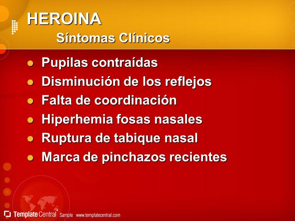 HEROINA Síntomas Clínicos Pupilas contraídas Pupilas contraídas Disminución de los reflejos Disminución de los reflejos Falta de coordinación Falta de