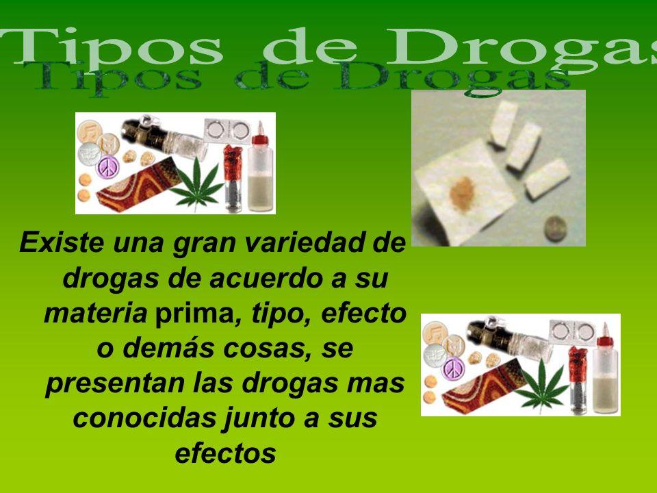 Existe una gran variedad de drogas de acuerdo a su materia prima, tipo, efecto o demás cosas, se presentan las drogas mas conocidas junto a sus efecto