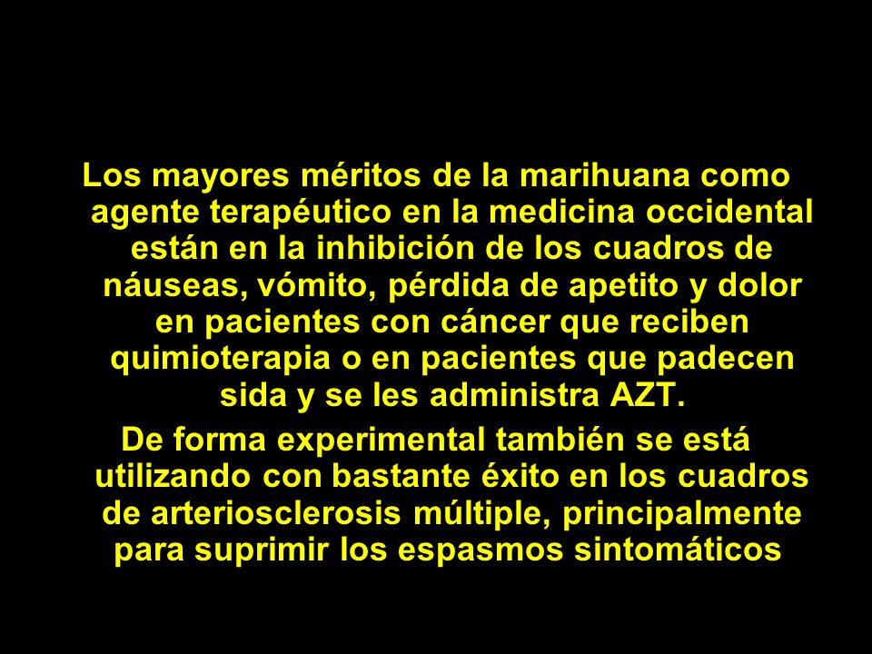 Los mayores méritos de la marihuana como agente terapéutico en la medicina occidental están en la inhibición de los cuadros de náuseas, vómito, pérdid