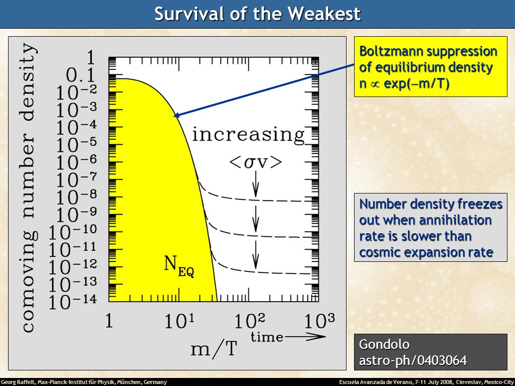 Georg Raffelt, Max-Planck-Institut für Physik, München, Germany Escuela Avanzada de Verano, 7-11 July 2008, Cinvestav, Mexico-City Survival of the Weakest Boltzmann suppression of equilibrium density n exp( m/T) Number density freezes out when annihilation rate is slower than cosmic expansion rate Gondoloastro-ph/0403064