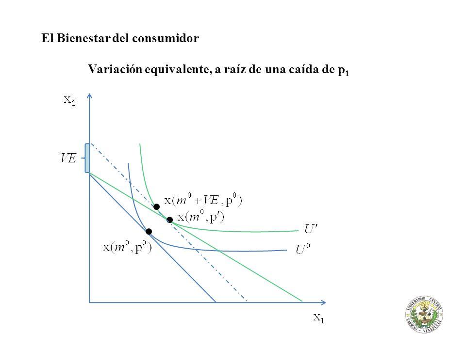 El Bienestar del consumidor Variación equivalente, a raíz de una caída de p 1