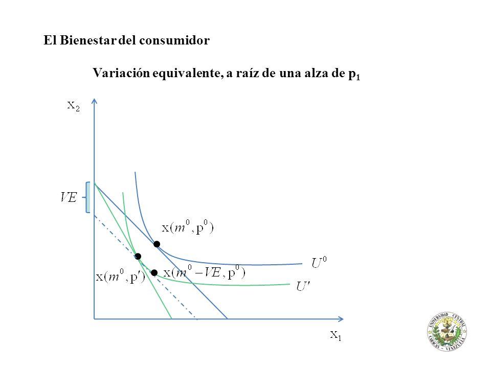El Bienestar del consumidor Variación equivalente, a raíz de una alza de p 1