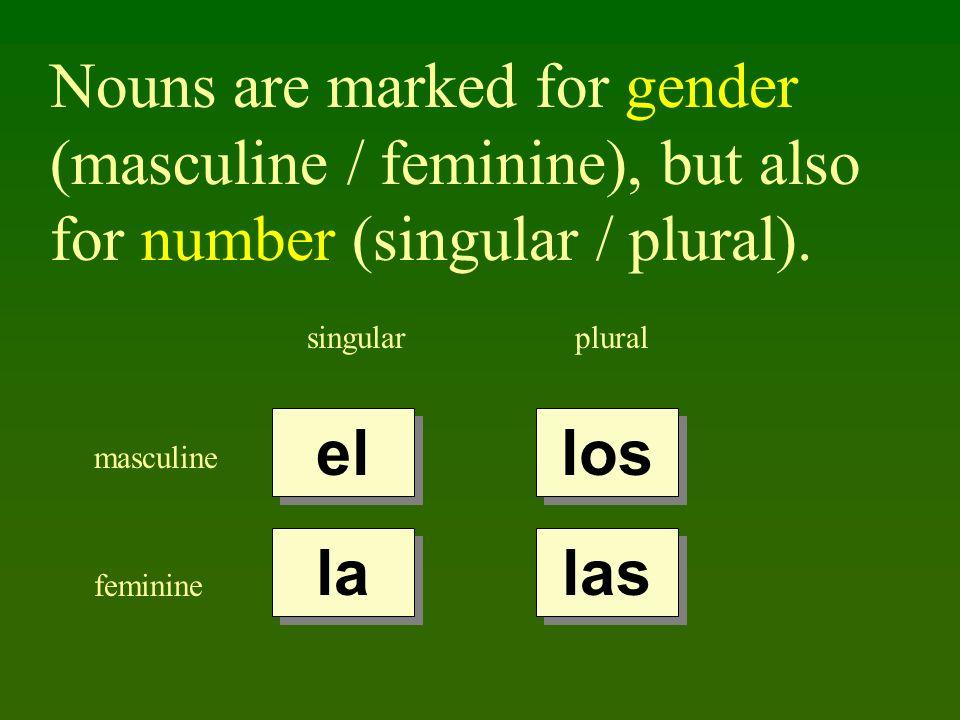 Nouns are marked for gender (masculine / feminine), but also for number (singular / plural). singularplural masculine feminine el la los las