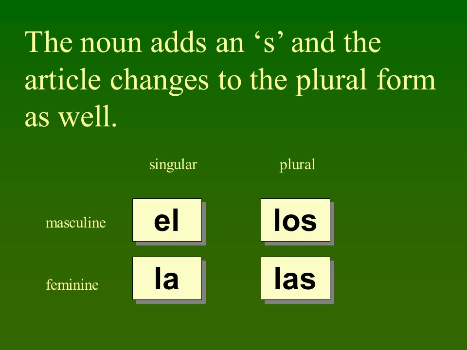 The noun adds an s and the article changes to the plural form as well. singularplural masculine feminine el la los las