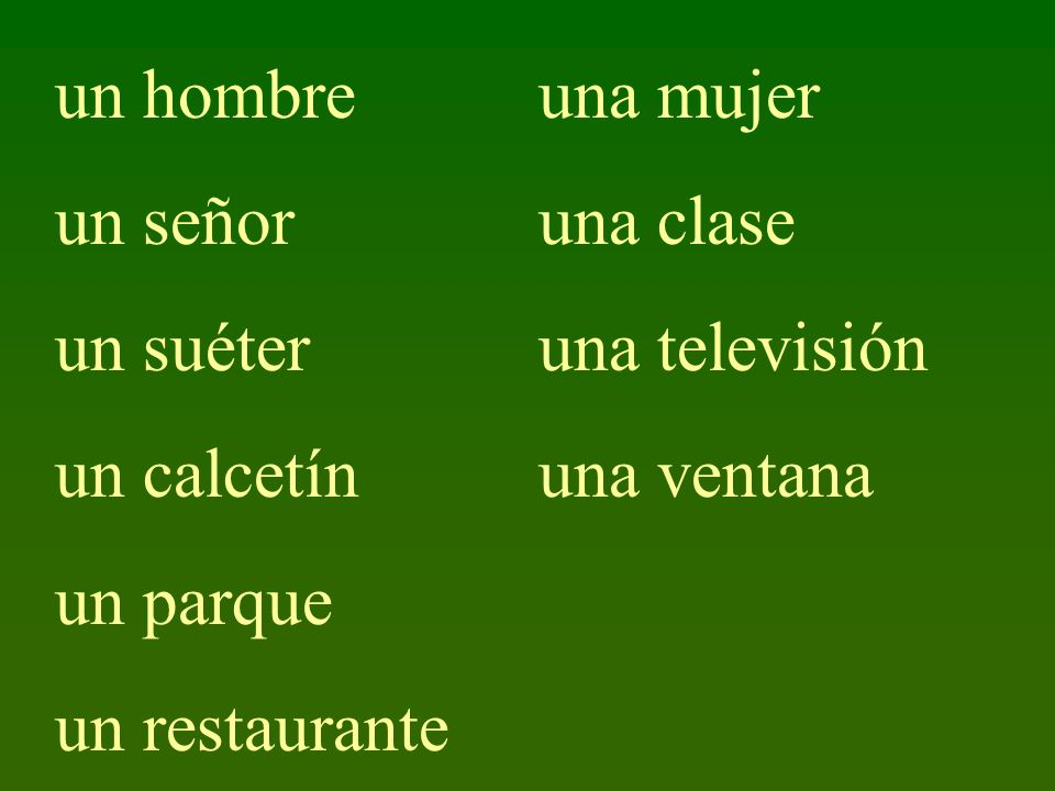 un hombre un señor un suéter un calcetín un parque un restaurante una mujer una clase una televisión una ventana