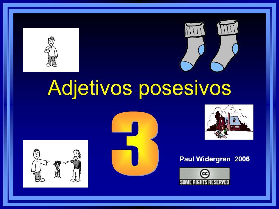 Adjetivos posesivos Paul Widergren 2006