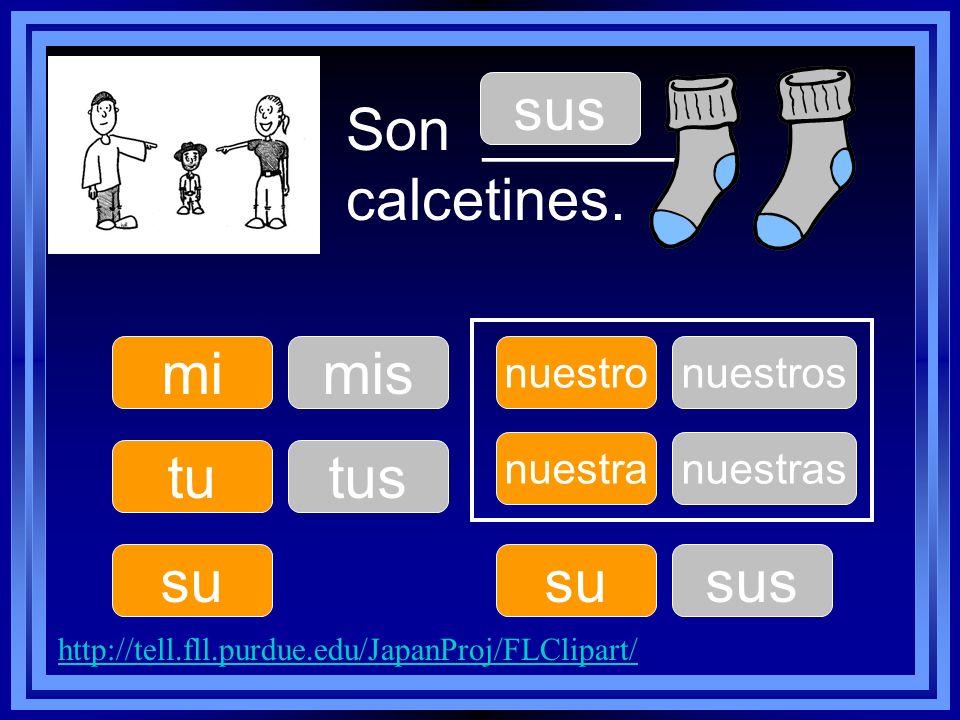 Son ______ calcetines. tu su nuestro su nuestra mimis tus sus nuestros sus nuestras http://tell.fll.purdue.edu/JapanProj/FLClipart/