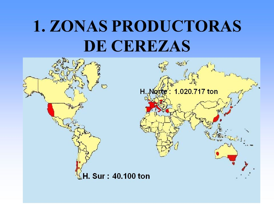1. ZONAS PRODUCTORAS DE CEREZAS