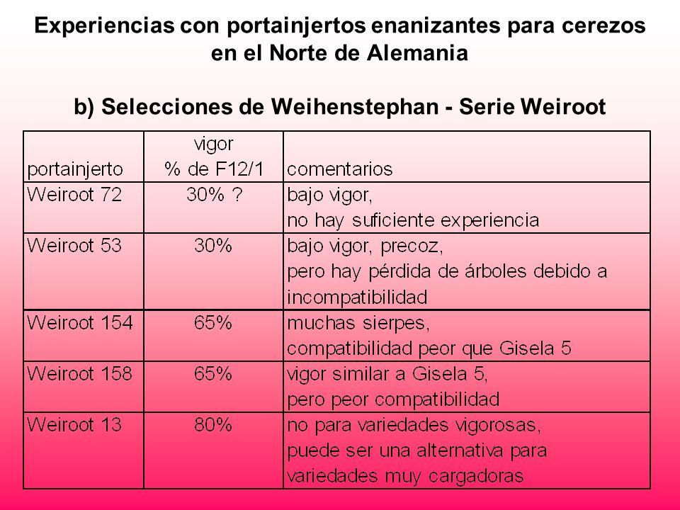 Experiencias con portainjertos enanizantes para cerezos en el Norte de Alemania b) Selecciones de Weihenstephan - Serie Weiroot