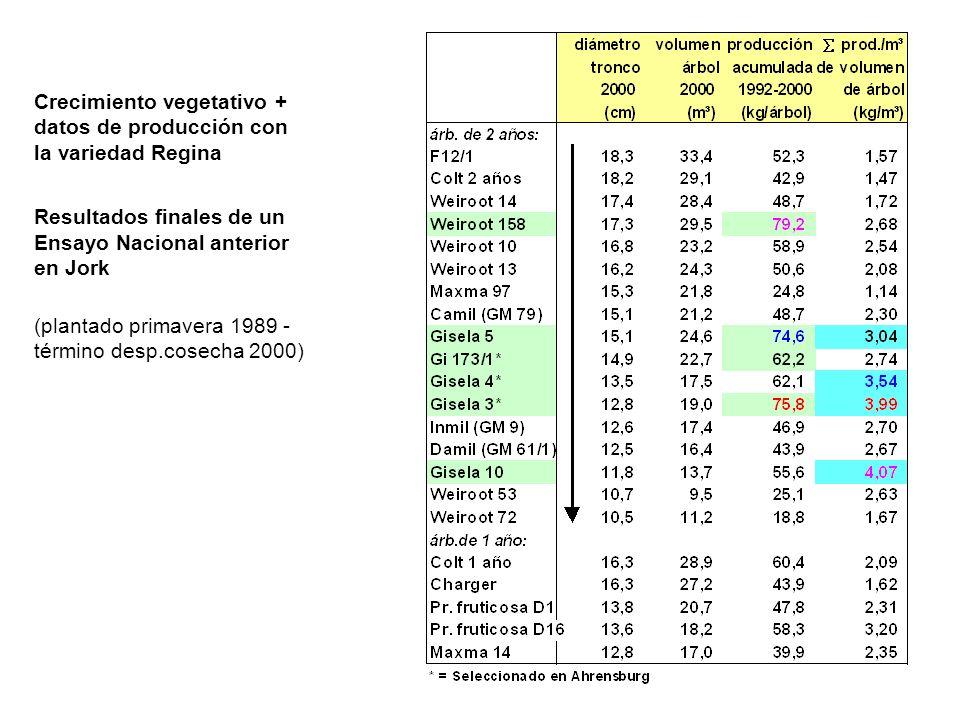 Crecimiento vegetativo + datos de producción con la variedad Regina Resultados finales de un Ensayo Nacional anterior en Jork (plantado primavera 1989