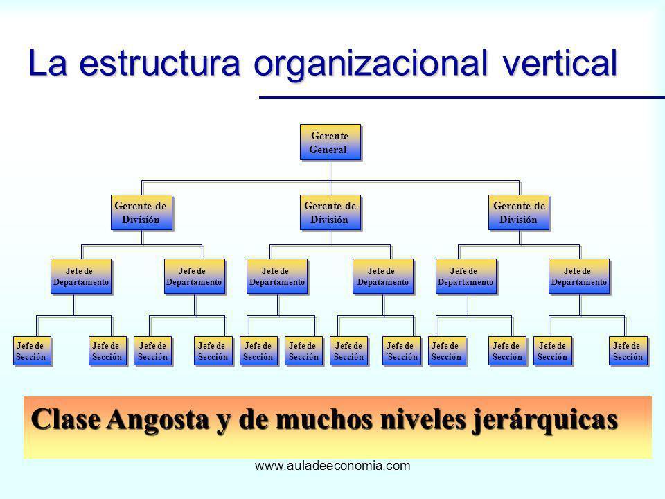 www.auladeeconomia.com La estructura organizacional vertical Clase Angosta y de muchos niveles jerárquicas Gerente General Gerente General Gerente de
