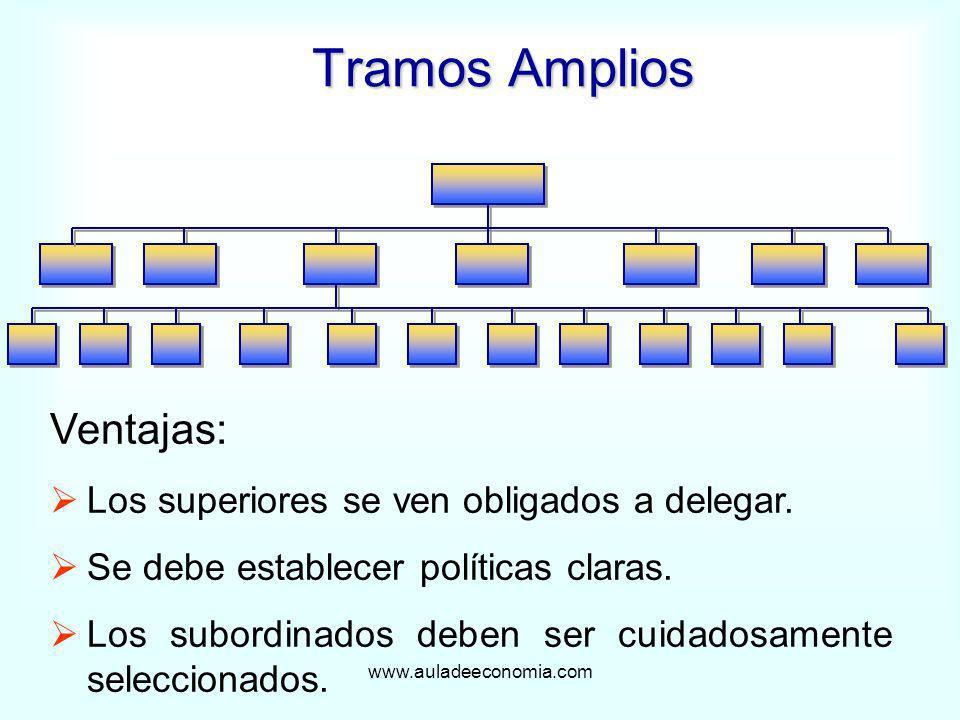 www.auladeeconomia.com Tramos Amplios Ventajas: Los superiores se ven obligados a delegar. Se debe establecer políticas claras. Los subordinados deben