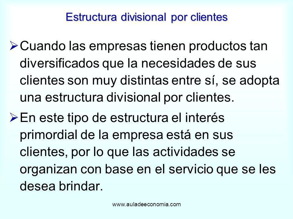 www.auladeeconomia.com Estructura divisional por clientes Cuando las empresas tienen productos tan diversificados que la necesidades de sus clientes s