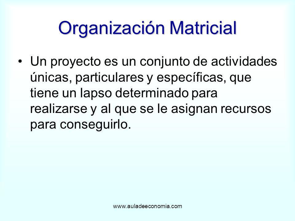 www.auladeeconomia.com Organización Matricial Un proyecto es un conjunto de actividades únicas, particulares y específicas, que tiene un lapso determi