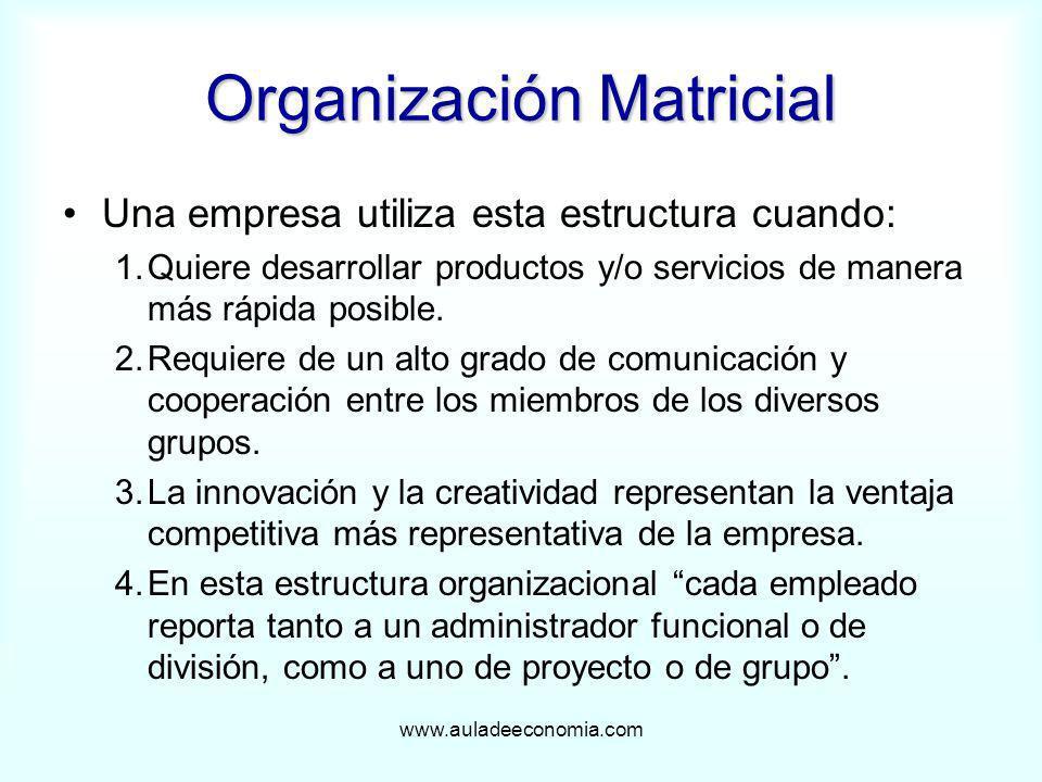 www.auladeeconomia.com Organización Matricial Una empresa utiliza esta estructura cuando: 1.Quiere desarrollar productos y/o servicios de manera más r