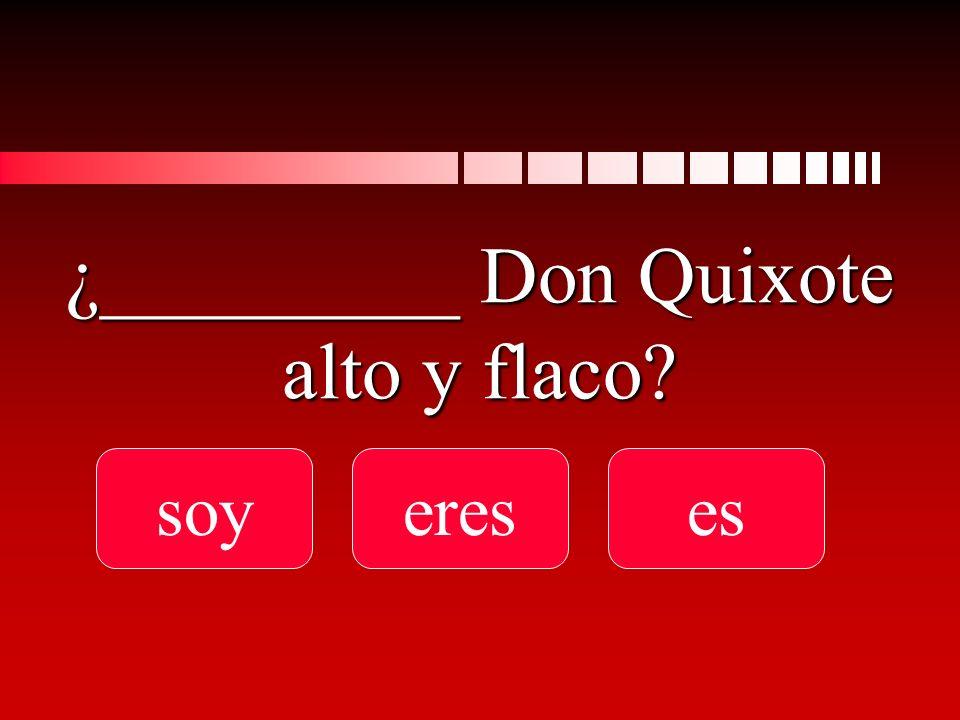 ¿_________ Don Quixote alto y flaco soyereses