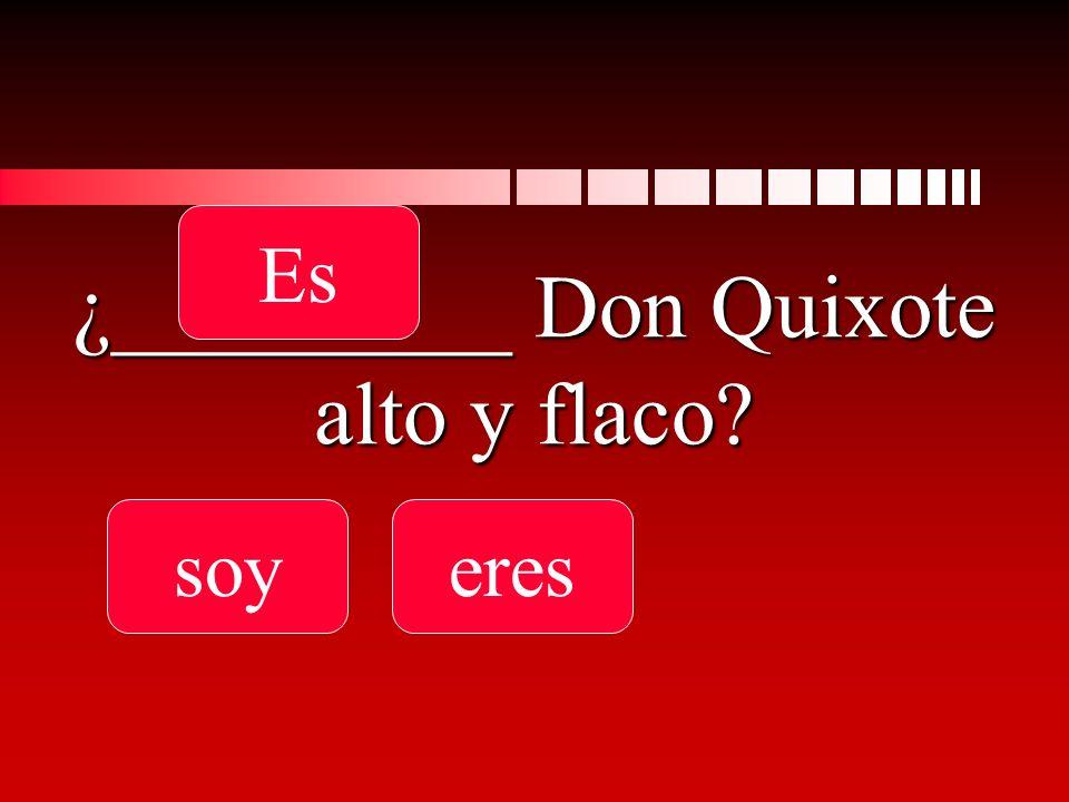 ¿_________ Don Quixote alto y flaco soyeres Es