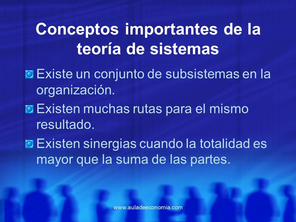 www.auladeeconomia.com Conceptos importantes de la teoría de sistemas Existe un conjunto de subsistemas en la organización. Existen muchas rutas para