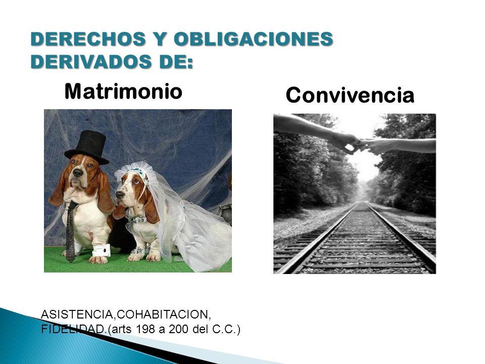 Matrimonio Convivencia DERECHOS Y OBLIGACIONES DERIVADOS DE: ASISTENCIA,COHABITACION, FIDELIDAD.(arts 198 a 200 del C.C.)
