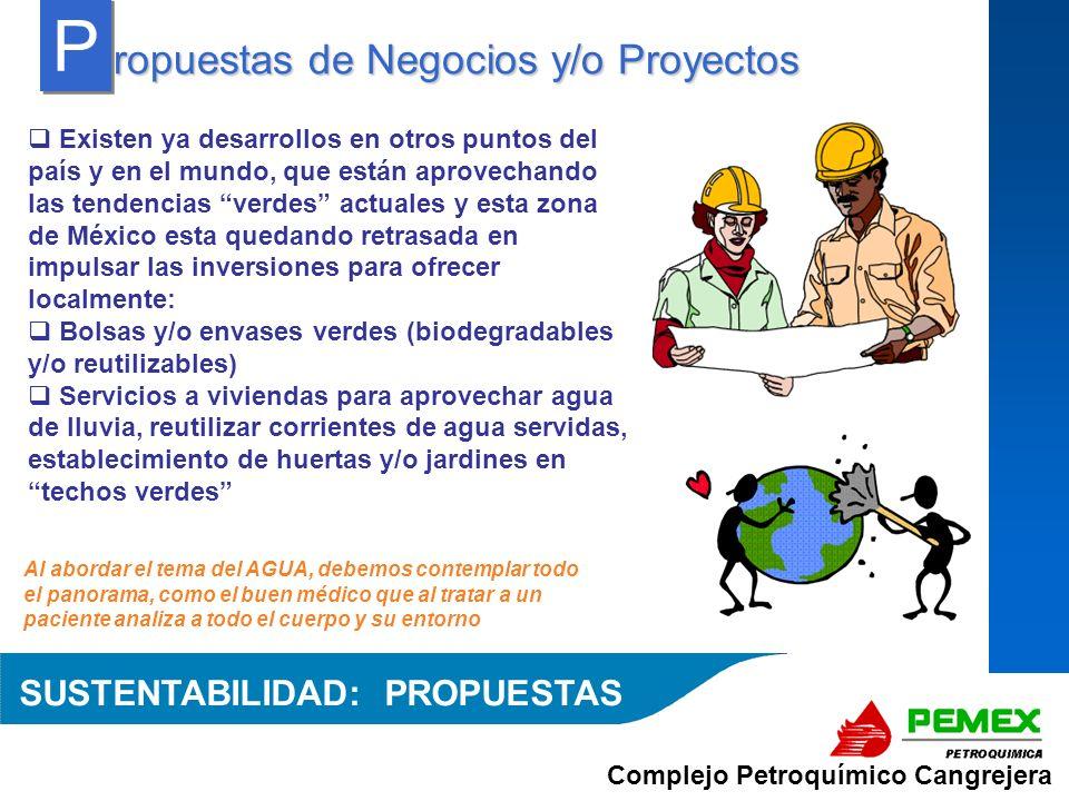 Complejo Petroquímico Cangrejera Al abordar el tema del AGUA, debemos contemplar todo el panorama, como el buen médico que al tratar a un paciente ana