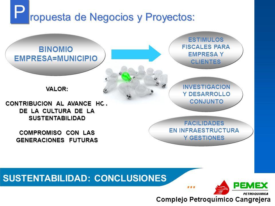 Complejo Petroquímico Cangrejera ropuesta de Negocios y Proyectos: P P VALOR: CONTRIBUCION AL AVANCE HOY DE LA CULTURA DE LA SUSTENTABILIDAD COMPROMIS