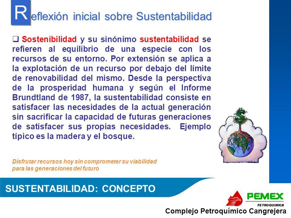 Complejo Petroquímico Cangrejera En el sureste de México, aún la disponibilidad del agua no es tanto un tema económico como ambiental roblemática contra la sustentabilidad P P SUBSISTEMA DE ECOSISTEMAS SUSTENTABILIDAD: PROBLEMATICA El mercado de comunidades vecinas presentan deficiencias en la oferta de eco-alternativas o productos y servicios verdes, lo que es una paradoja dado los recursos manejados en la región, por ejemplo: En Coatzacoalcos se ubica la mayor zona de producción de la materia prima para la industria del plástico de México y no se cuenta con suficientes plantas fabricantes de bolsas de plástico biodegradables y de otros productos con tendencia de avances en materia de menor impacto ambiental Esta zona del país presenta una alta incidencia de exposición solar, de precipitación pluvial, y sin embargo, no se cuenta con ofertas de servicios pro-ambientales para viviendas
