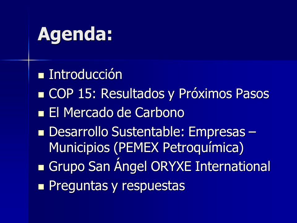 Agenda: Introducción Introducción COP 15: Resultados y Próximos Pasos COP 15: Resultados y Próximos Pasos El Mercado de Carbono El Mercado de Carbono