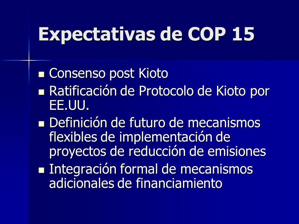 Expectativas de COP 15 Consenso post Kioto Consenso post Kioto Ratificación de Protocolo de Kioto por EE.UU. Ratificación de Protocolo de Kioto por EE