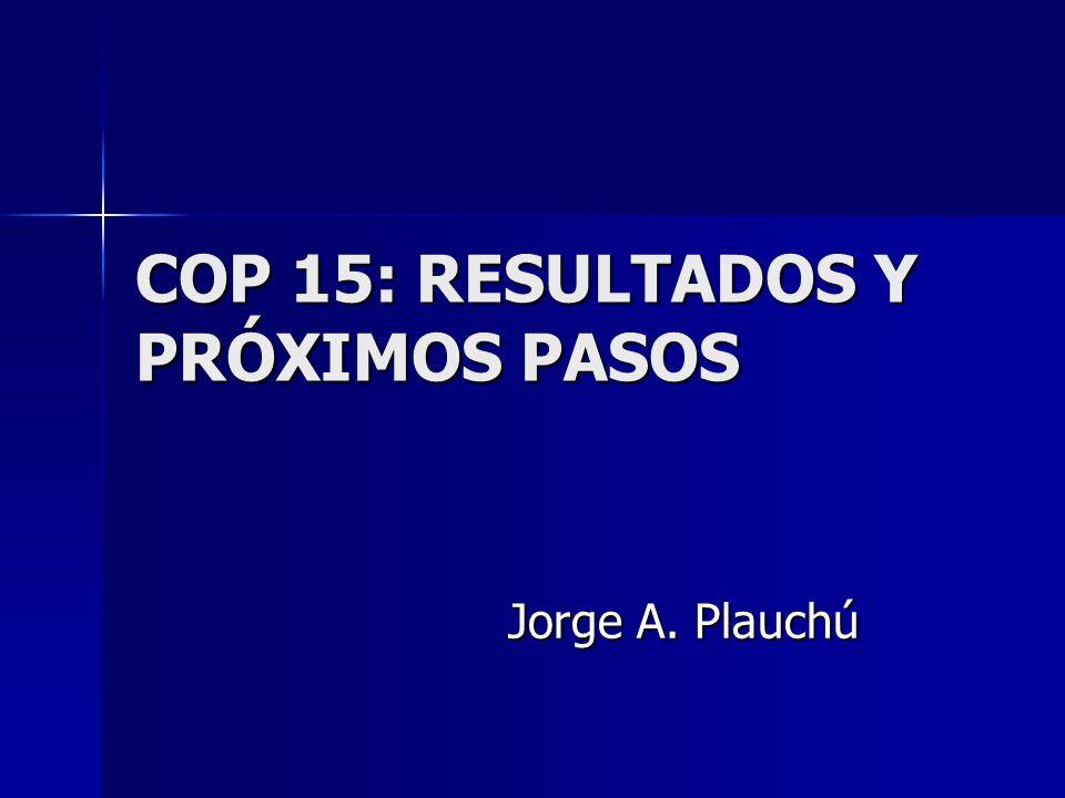 COP 15: RESULTADOS Y PRÓXIMOS PASOS Jorge A. Plauchú