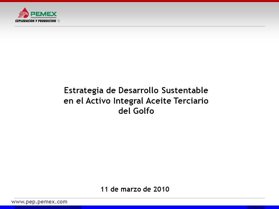 www.pep.pemex.com 11 de marzo de 2010 Estrategia de Desarrollo Sustentable en el Activo Integral Aceite Terciario del Golfo