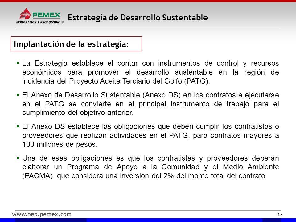 www.pep.pemex.com Estrategia de Desarrollo Sustentable 13 La Estrategia establece el contar con instrumentos de control y recursos económicos para pro